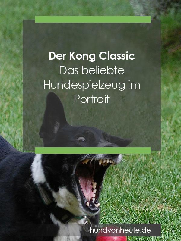 kong-hundespielzeug